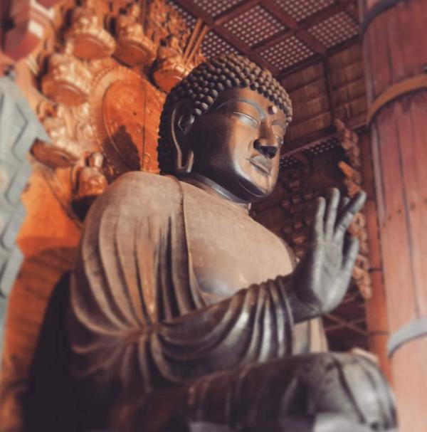 Travel tip in Japan:Nara vol.1