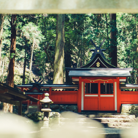 Offering refreshing air that cleans the spirit from the inside out, this forest shrine is home to the dragon god.
