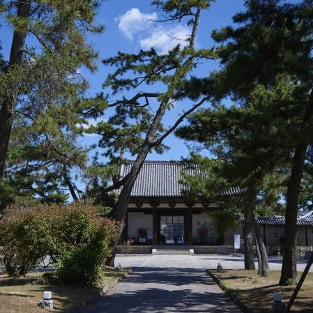 Horyuji Temple: a complex which houses some of the world's oldest wooden buildings Here, we go on a journey to explore the secrets concealed in this ancient temple