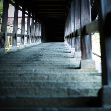 24 hours of beauty – Enjoy the best views of Todaiji Temple on a Nigatsu-do walk