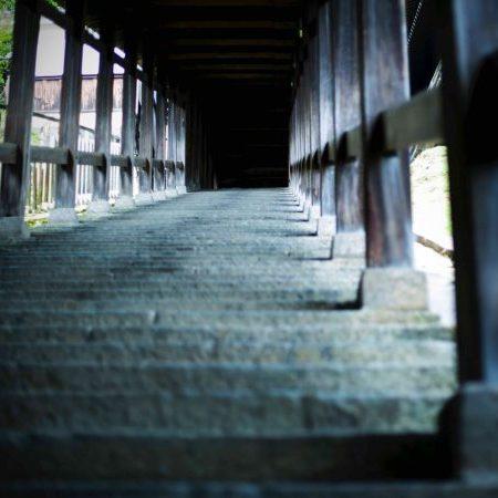 24時間、美しい。東大寺イチの景色を楽しむ二月堂さんぽ